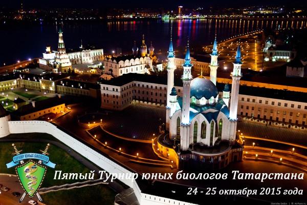 Постер ТЮБ Татарстана 2015