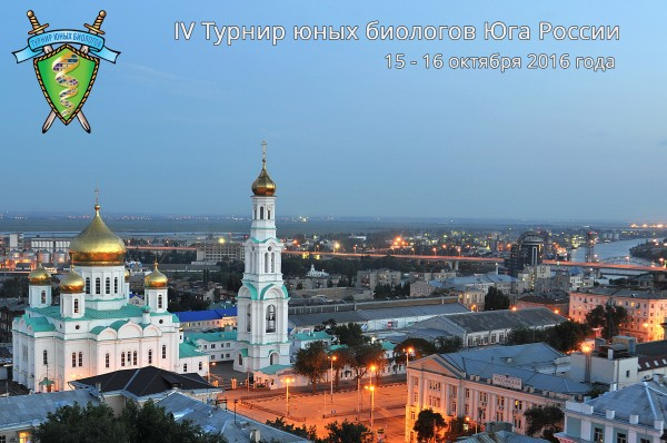Постер ТЮБ Юга России 2016