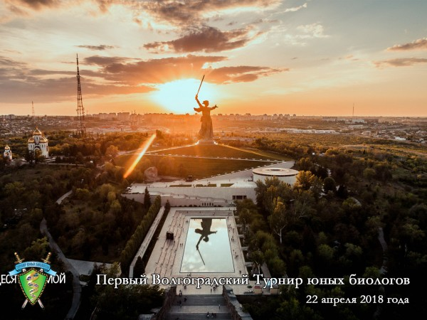 Постер Волгоградского ТЮБ - 2017