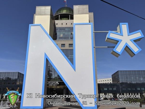 Постер Новосибирского Турнира юных биологов 2020 года