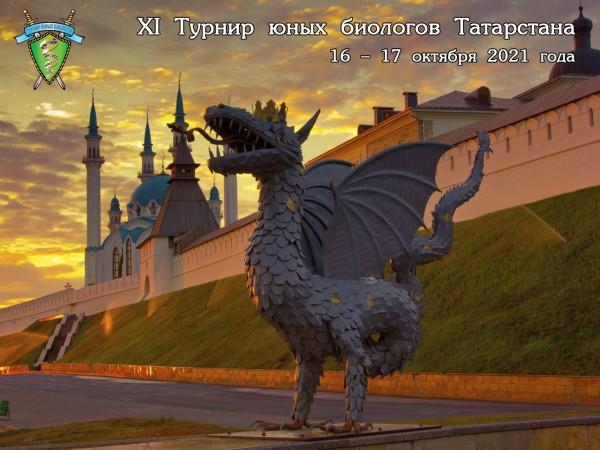 Открыта подача заявок на ТЮБ Республики Татарстан-2021
